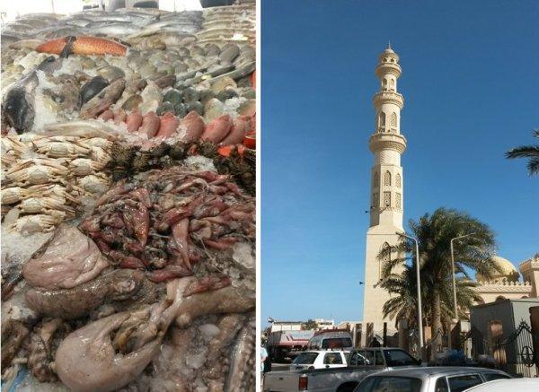 Hurghada07.jpg