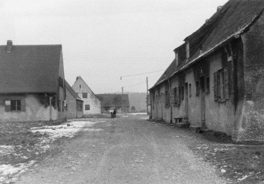 Föhrenwald01