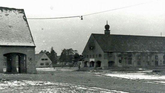 Föhrenwald03