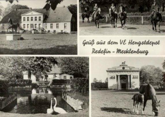 Postkarte Redefin